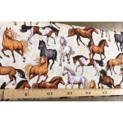 katoen wilde paarden